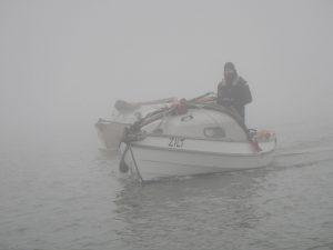 Zilt in de mist